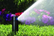 полив газонів